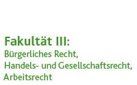 Wirtschaftsrecht (Prof. Dr. Torsten Schöne)